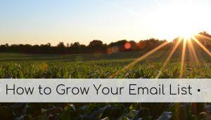 How to grow your email list (1)