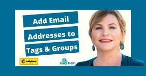 Add Email Addresses to Tags and Groups in Mailchimp