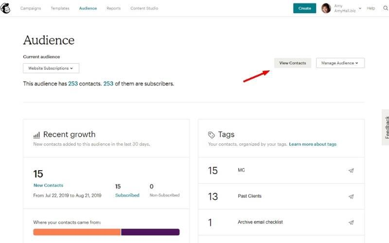 View contacts on Mailchimp audiences