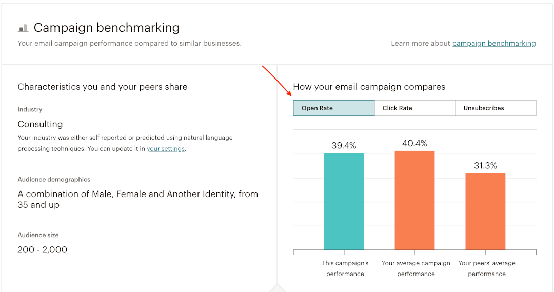 Open-rate-How-to-print-your-Mailchimp-email-campaign-report