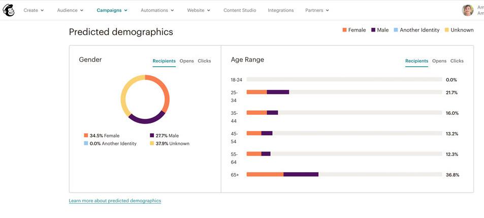 Predictive demographics How to print your Mailchimp report